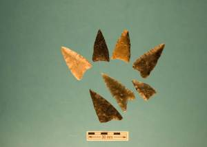 Dorset Paleoeskimo Artifacts From Bird Cove (Photo Latonia Hartery)